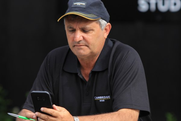 Marcus Corban resigns from Cambridge Stud