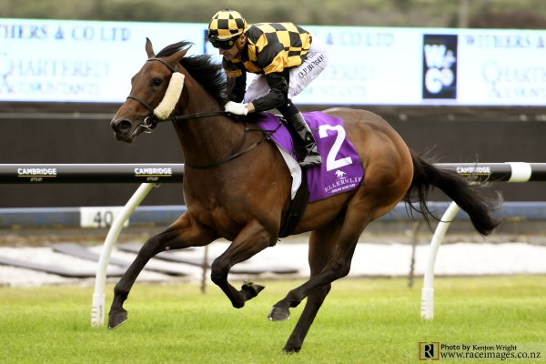Karaka Million Aspirants Gallop at Ellerslie