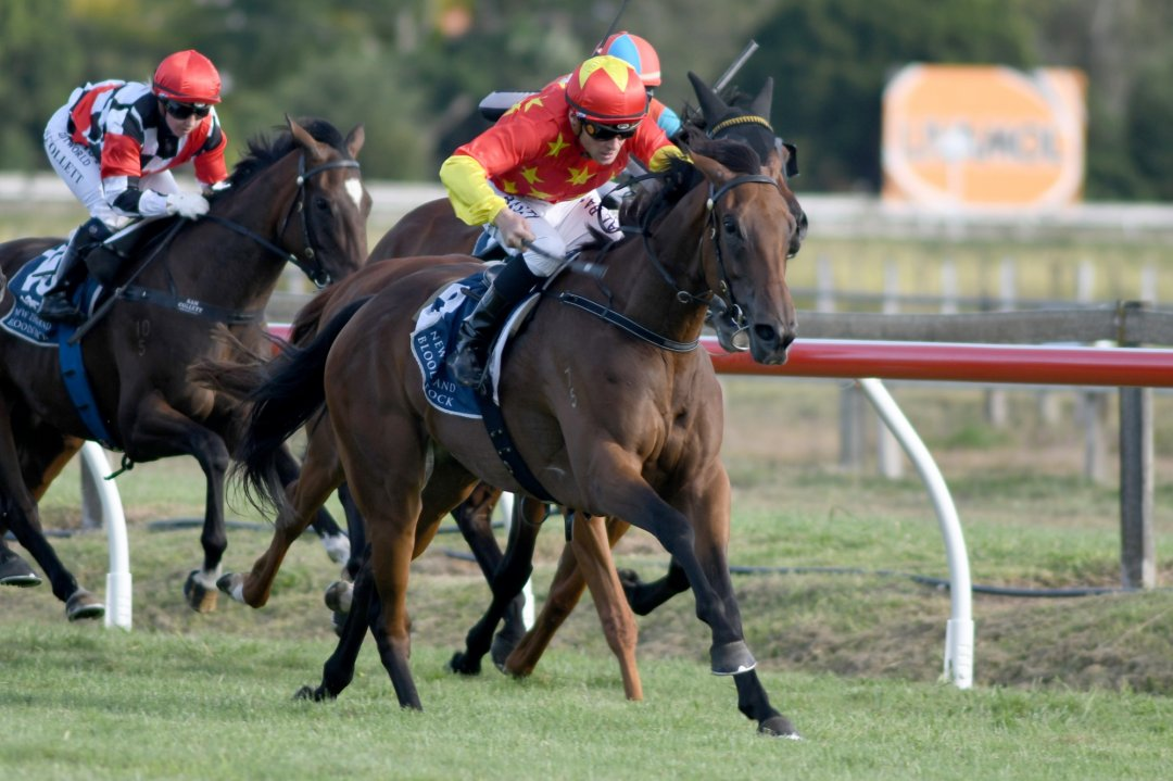 Classic test for Baker-Forsman fillies