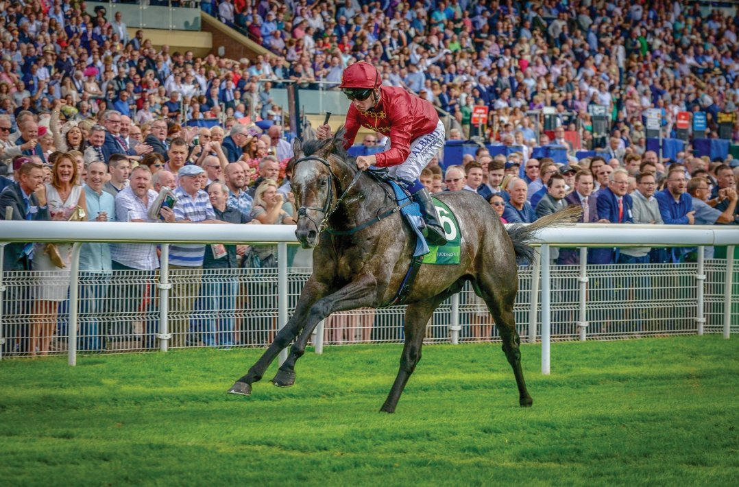 Book Closed For Roaring Lion