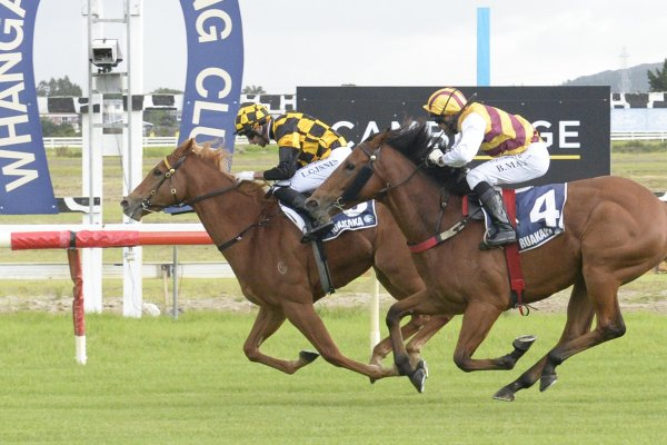Ziegfeld opens winning account in style
